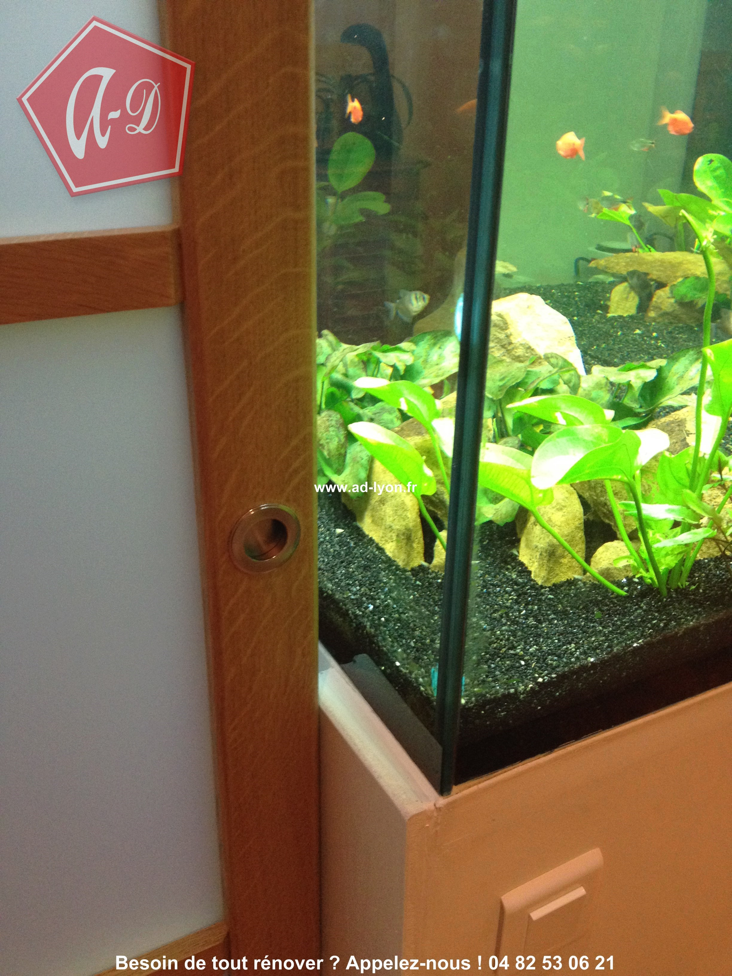 prolongement de la porte avec aquarium